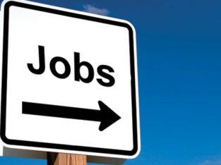 Ofertă de muncă